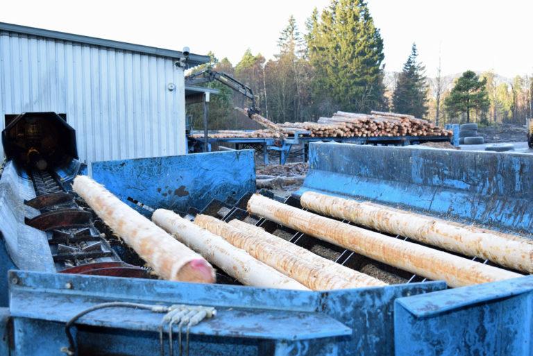 Bilde-6b-barket-tømmer
